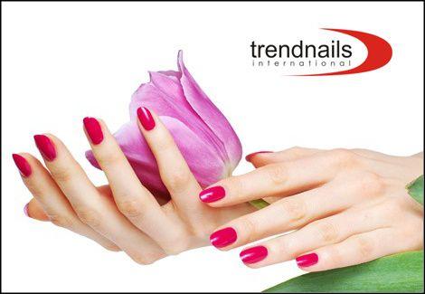 25€για τοποθέτηση τεχνητών νυχιών ή συντήρηση ή ενίσχυση του φυσικού με Gel, πορσελάνη ή ακρυλικό, μόνιμο χρώμα και γαλλικό, από το Trend Nails στο Σύνταγμα, αξίας 60€ - έκπτωση 64%