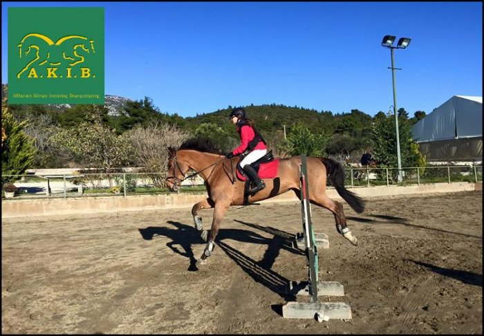 Από 6€ για βόλτα με πόνι και μαθήματα ιππασίας για παιδιά και ενήλικες, στο ''Αθλητικό Κέντρο Ιππασίας Βαρυμπόμπης (Α.Κ.Ι.Β.)'' εικόνα