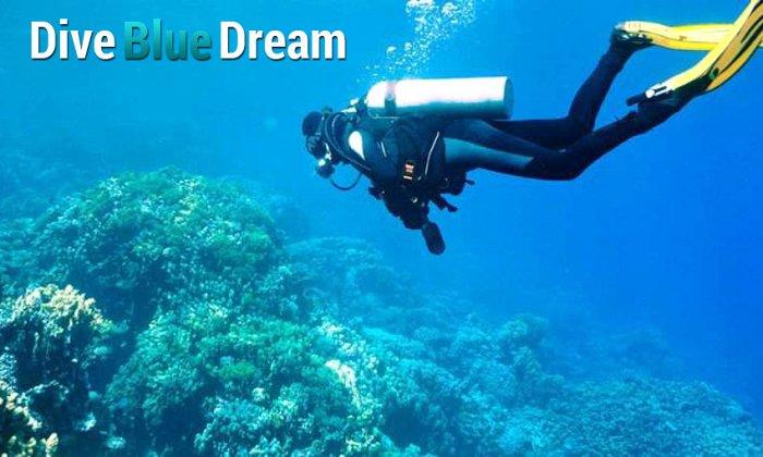 Dive Blue Dream | Βάρκιζα εικόνα
