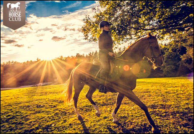 12€ για ένα μάθημα ιππασίας για αρχάριους διάρκειας 40' ή 25€ για δύο μαθήματα ιππασίας για αρχάριους διάρκειας 60' το κάθε ένα, από τον Όμιλο Ιππικής Αντοχής στην Αυλώνα, αξίας 24€ - έκπτωση 50% εικόνα