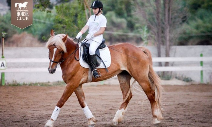 85€ για 8 μαθήματα ιππασίας για αρχάριους διάρκειας 60' το κάθε ένα, από τον Όμιλο Ιππικής Αντοχής στην Αυλώνα